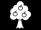 木の実・果物がなった木の白黒イラスト