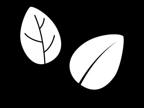 2枚の葉っぱの白黒イラスト02