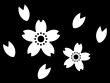たくさんの桜の花びらの白黒イラスト