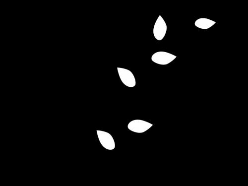 蔦と葉っぱの白黒イラスト02