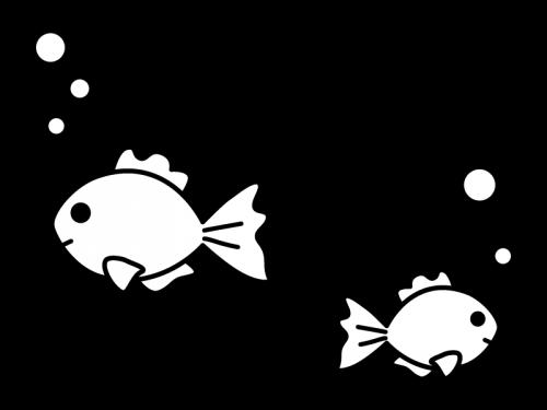 金魚の白黒イラスト02 かわいい無料の白黒イラスト モノぽっと