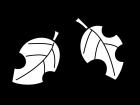 紅葉・落ち葉の白黒イラスト