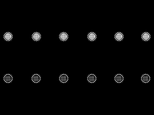 ひまわりのライン・罫線の白黒イラスト02