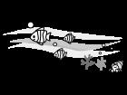 珊瑚や魚の海中の白黒イラスト