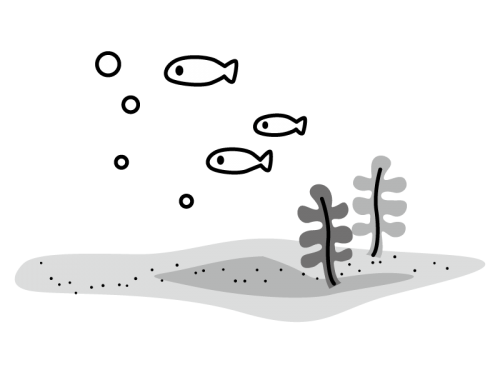 わかめなどの海藻類と魚の白黒イラスト